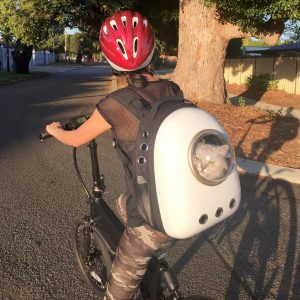 ZooMee electric pedal power bikes